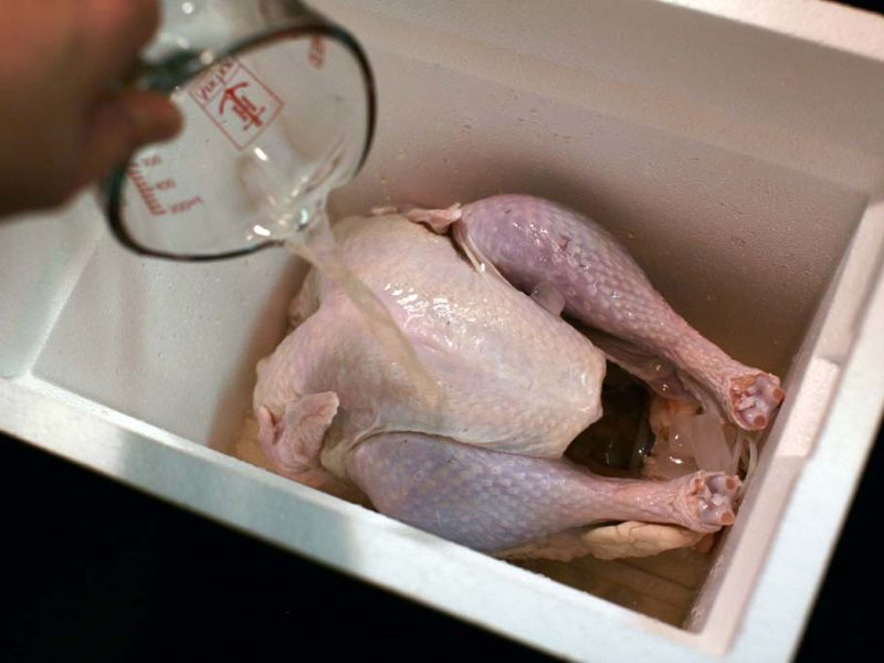 9+ How To Brine A Turkey In A Cooler